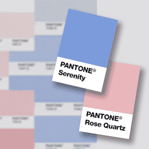 Pantone 2016 colors of the year desimone design for Color of the year 2016