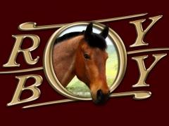 Roy Boy